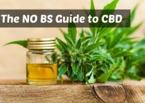 The No BS Guide to Cannabidiol (CBD): Information, Uses, Side Effects and Laws