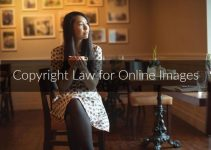 Understanding Copyright Law for Online Images – In 2021