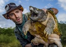 Coyote Peterson Net Worth 2021