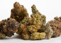 How to Buy CBD Flower Online – A Complete Guide 2021
